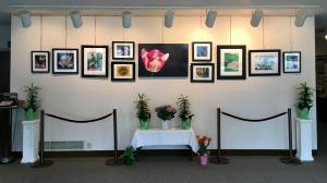 Spring Photography Display At St Peters In North Wales